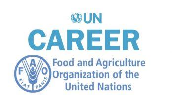 জাতিসংঘে নিয়োগ www.fao.org fao jobs